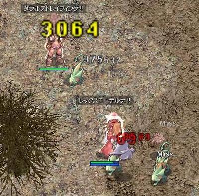 2007120302