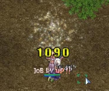 2008062904_2